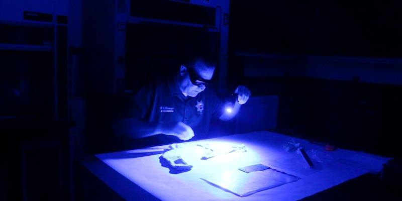 Forensics_Bureau3